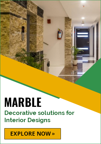 Explore The Range of Marble