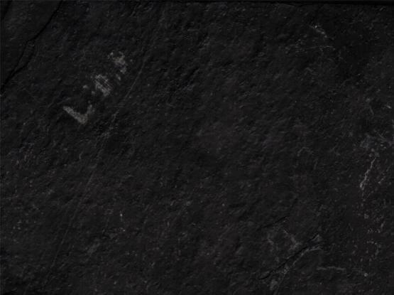 Jack Black Slate