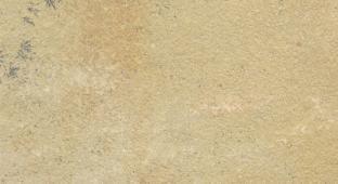 Mint Fossil Natural Sandstone
