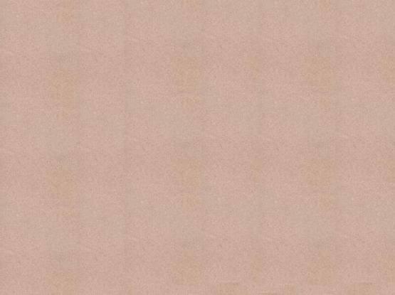 Dholpur Beige Honed Sandstone