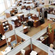 Design Ideas For Calm Office Interiors