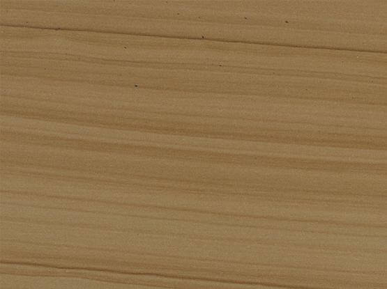 Desert Teak Polished Sandstone