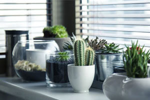 Planters To Make A Statement In Your Space